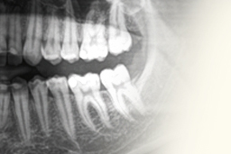 baner_dzial_kategorie_radiologia